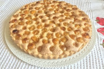 gluten-free Mirabelle plum pie